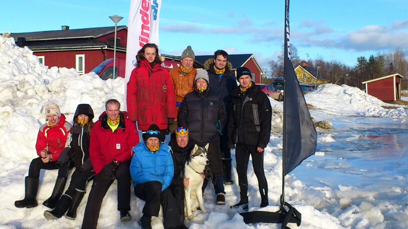 Team Siberian Husky
